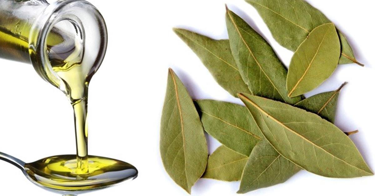 Лавровое масло: чудо-продукт для вашего здоровья!