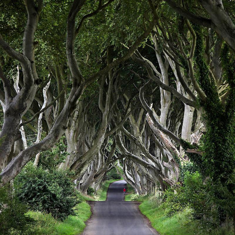 Красоты Ирландии: очарование изумрудного острова