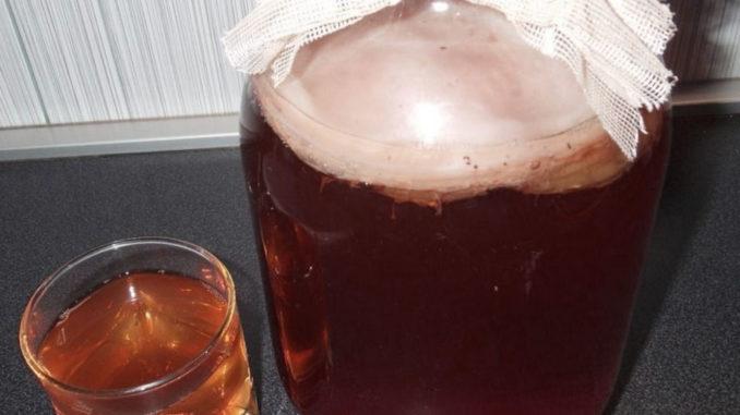Полезен ли напиток из чайного гриба?
