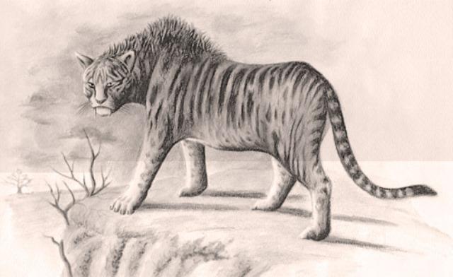 Загадочный зверь Мнгва - африканский тигр, ростом с осла