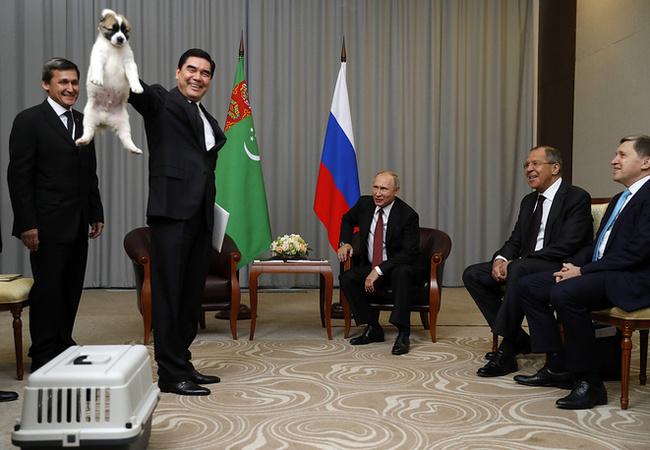Президент Туркменистана подарил Путину щенка алабая по кличке Верный