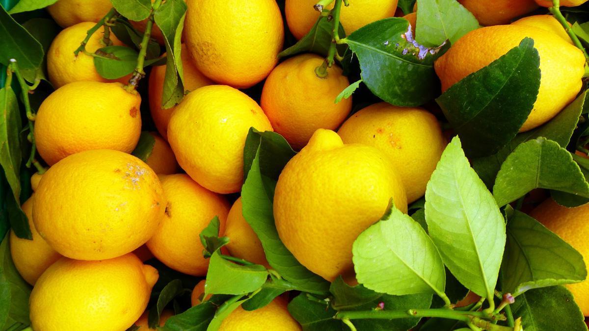 Медики открыли новые свойства витамина С…