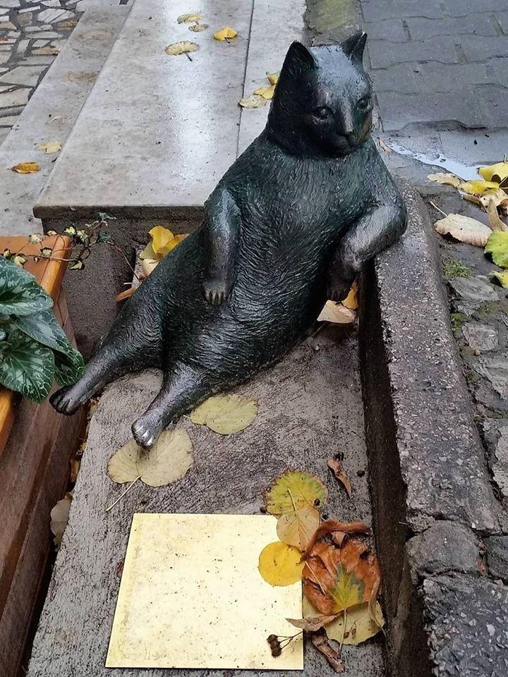 Турецкие грабители вернули на место памятник задумчивому коту