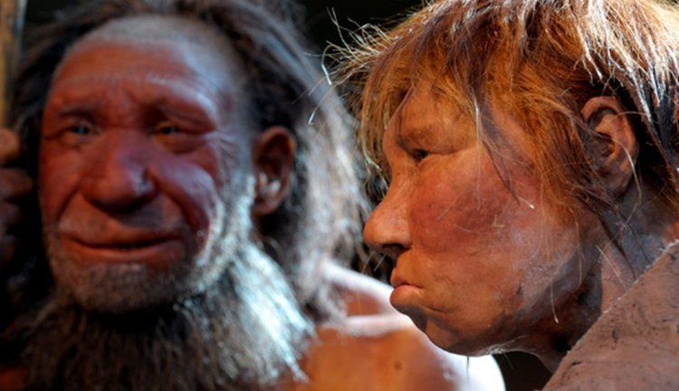 Неандерталец неандертальцу… еда?