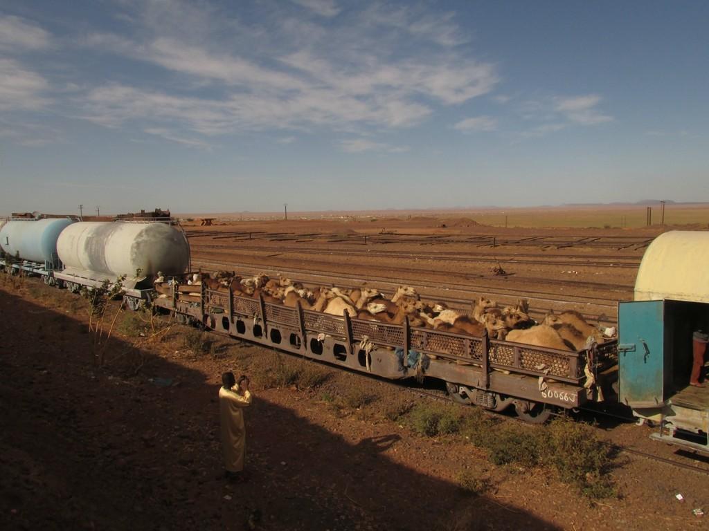 Самый длинный поезд мира