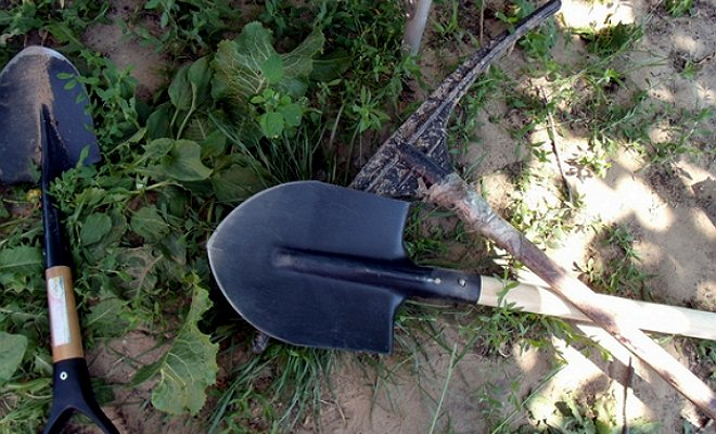 10 обязательных инструментов для работы в саду