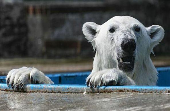 В Москве откроется для посещения питомник с редкими животными