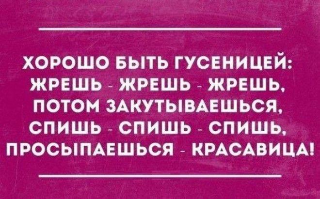 Прикольные открытки для любителей сарказма)