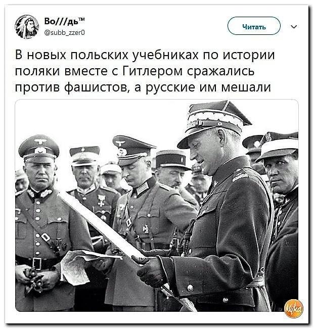 Поляки вместе с Гитлером сражались против фашистов?
