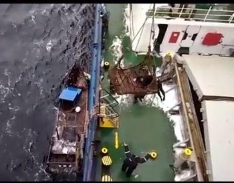 Российские моряки спасли вЯпонском море тонущих северокорейских рыбаков