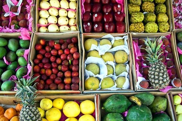 Россельхознадзор запретил поставки египетских овощей и фруктов в Россию