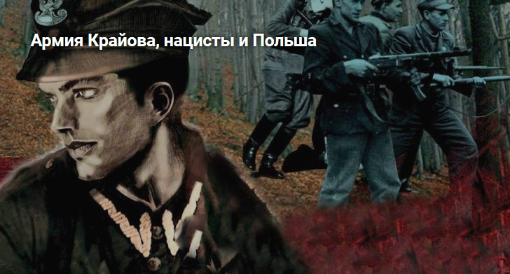Армия Крайова, нацисты и Польша