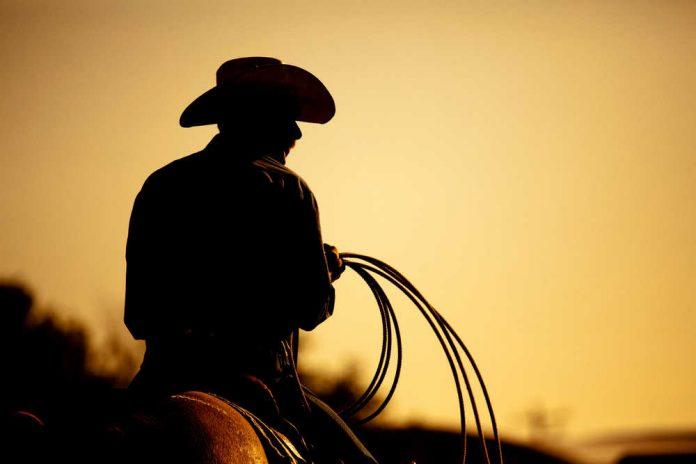 Этот ковбой сказал прекрасну…