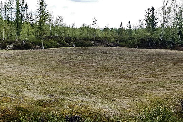 В поисках Тунгусского метеорита