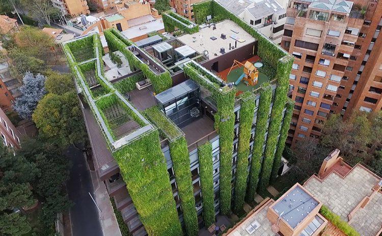 Зеленое сердце Боготы — самые большие висячие сады современности