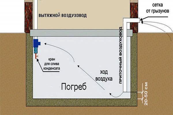 Рис. 13. Устройство вентиляции в погребе под домом