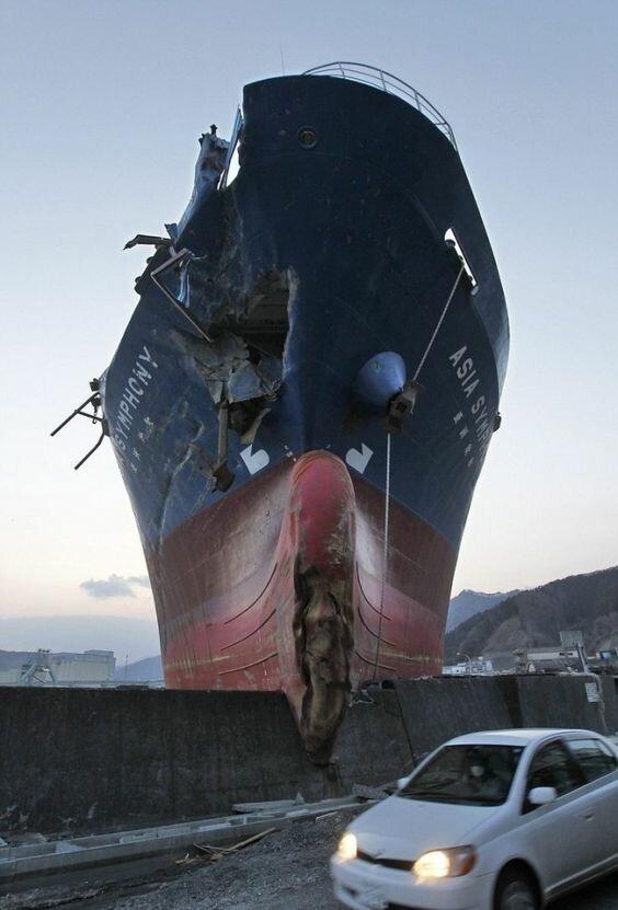 30 фото о жизни и смерти коней моря
