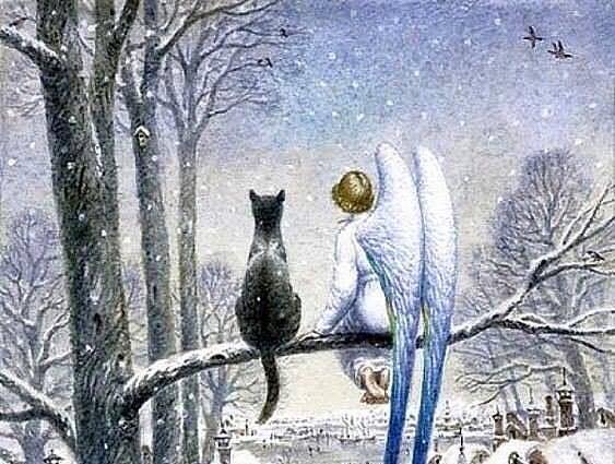 Ангел и кот