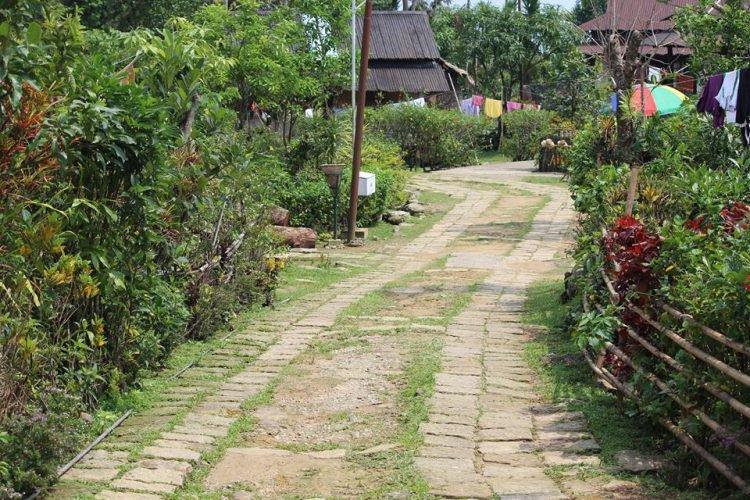 И в Индии чисто бывает: как в деревне Маулиннонг соблюдают чистоту