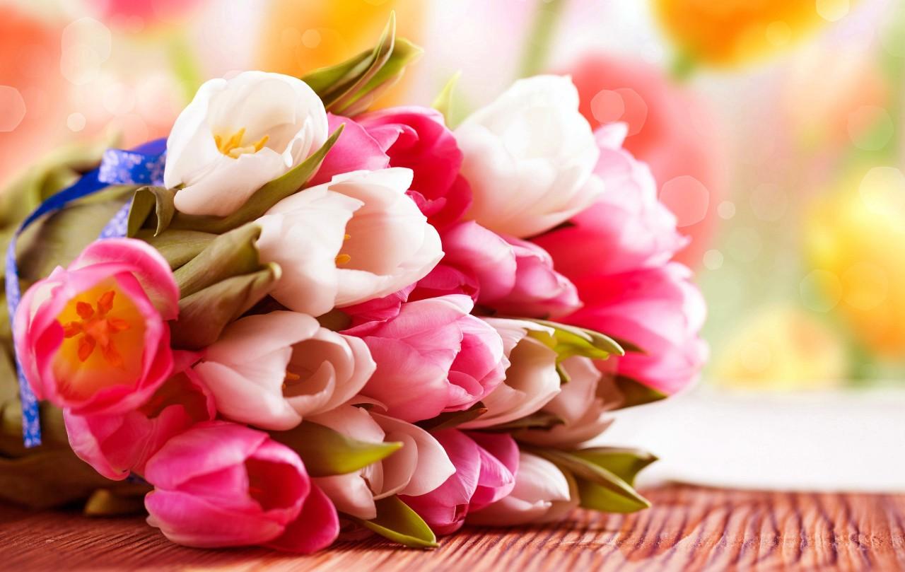 Стихи о тюльпанах