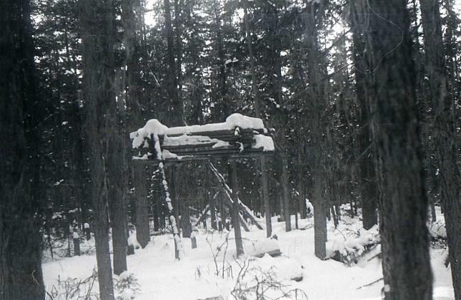 Мертвые шаманы мстят