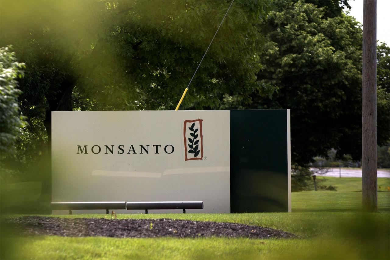 Монсанто, ГМО в России - кто придумывает и распространяет фейки