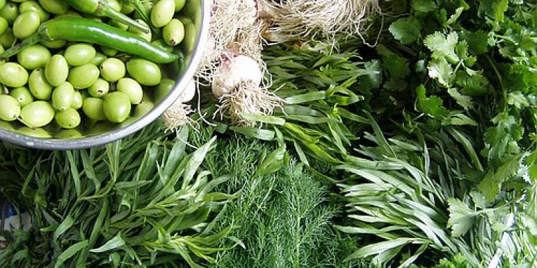 Зелень на зиму: 4 простых рецепта