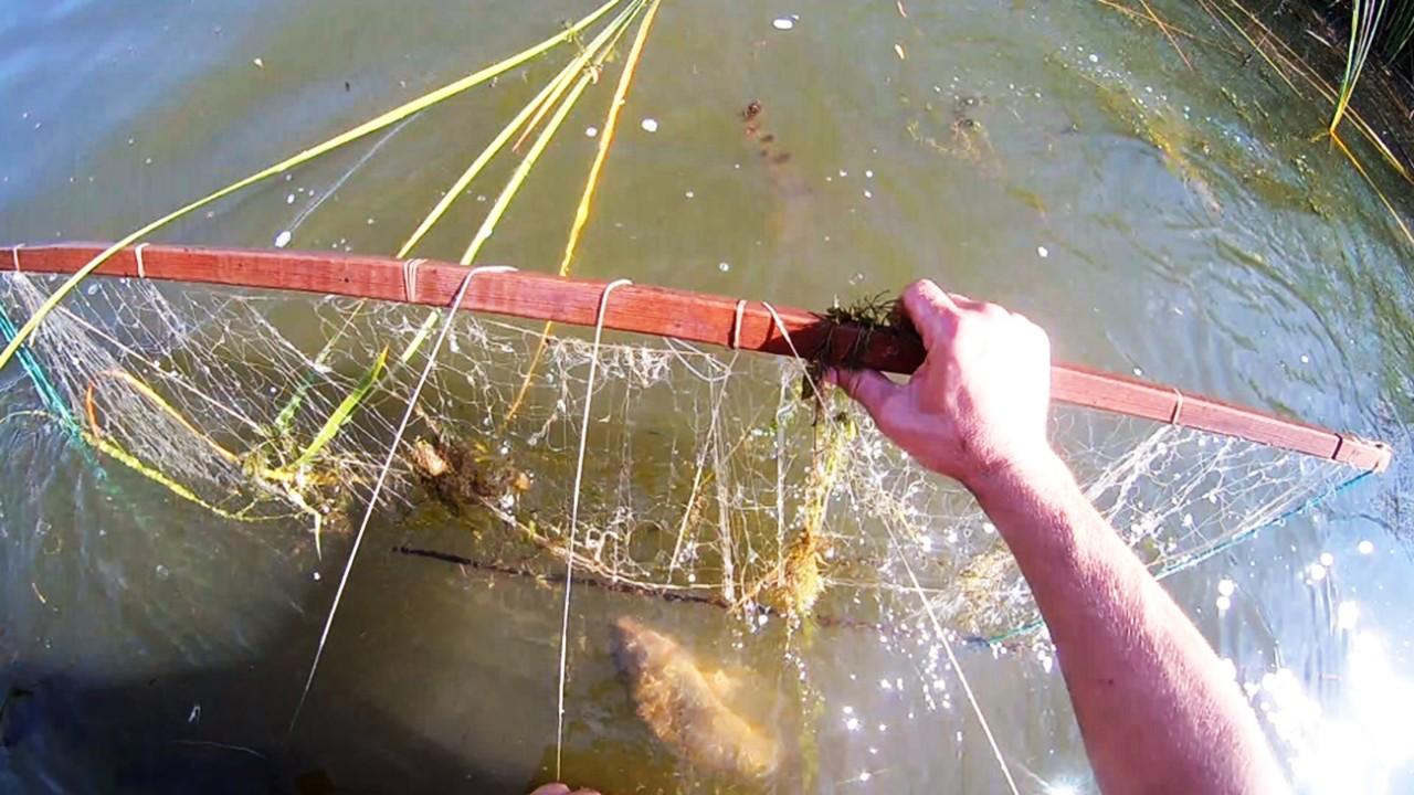 Рыбалка на экран-телевизор.проверка карась судак Рыбалка на видео
