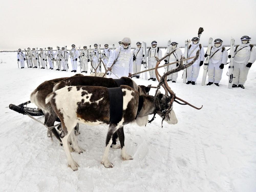 Активность России в Арктике встревожила британские СМИ