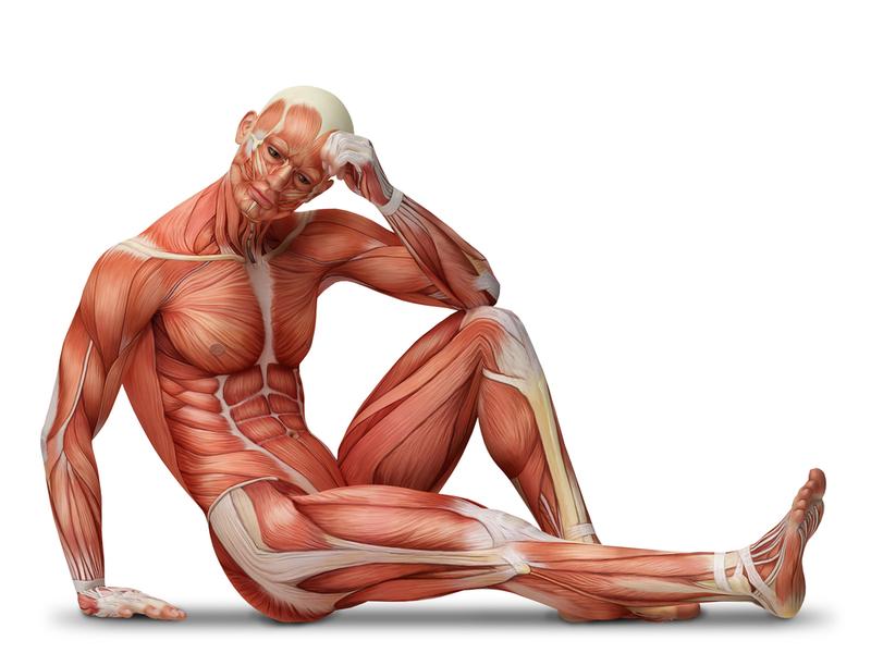 Проверенные упражнения для лечения простатита