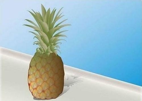 Тропический уголок дома. Узнай, как можно вырастить ананас в домашних условиях!