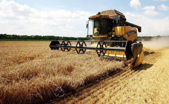 Торговая стена для России: Турция установила 130% пошлину наввоз пшеницы