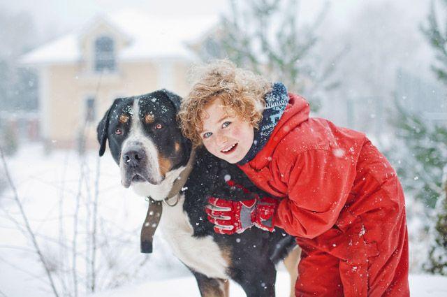 На приёме у собак. Что такое канистерапия?