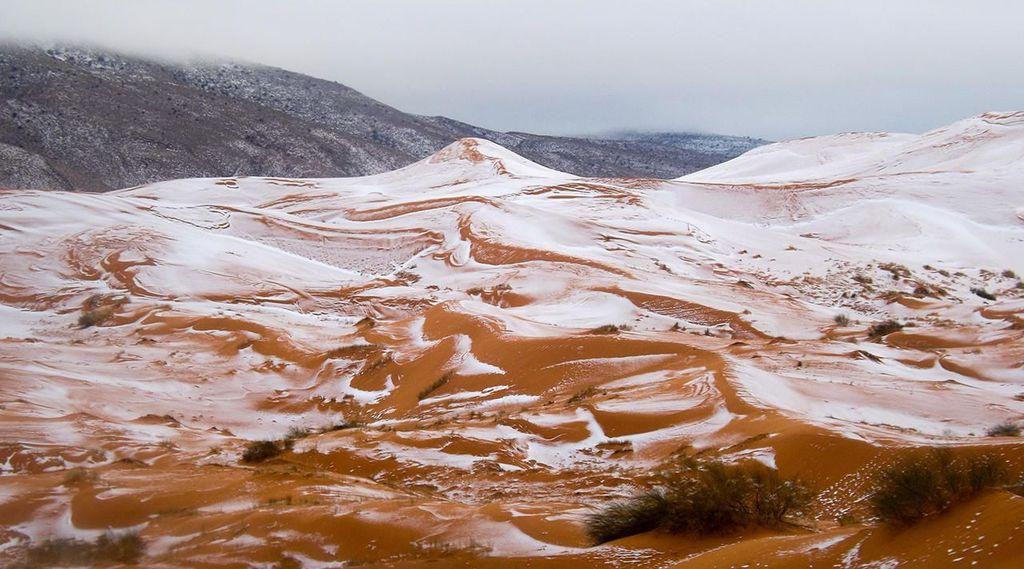 В пустыне Сахара впервые за 37 лет выпал снег