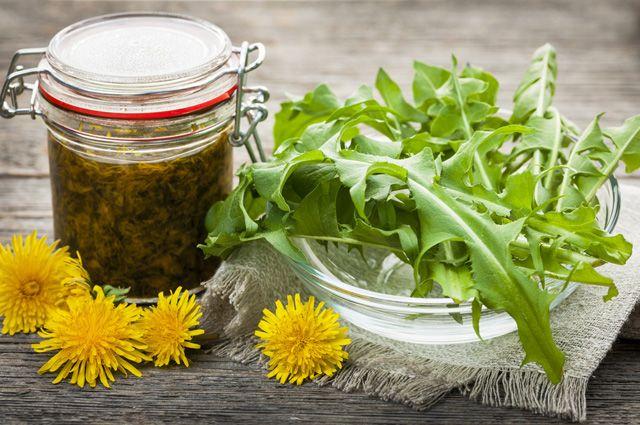 Варенье из одуванчиков. Как приготовить вкусные блюда из целебного растения