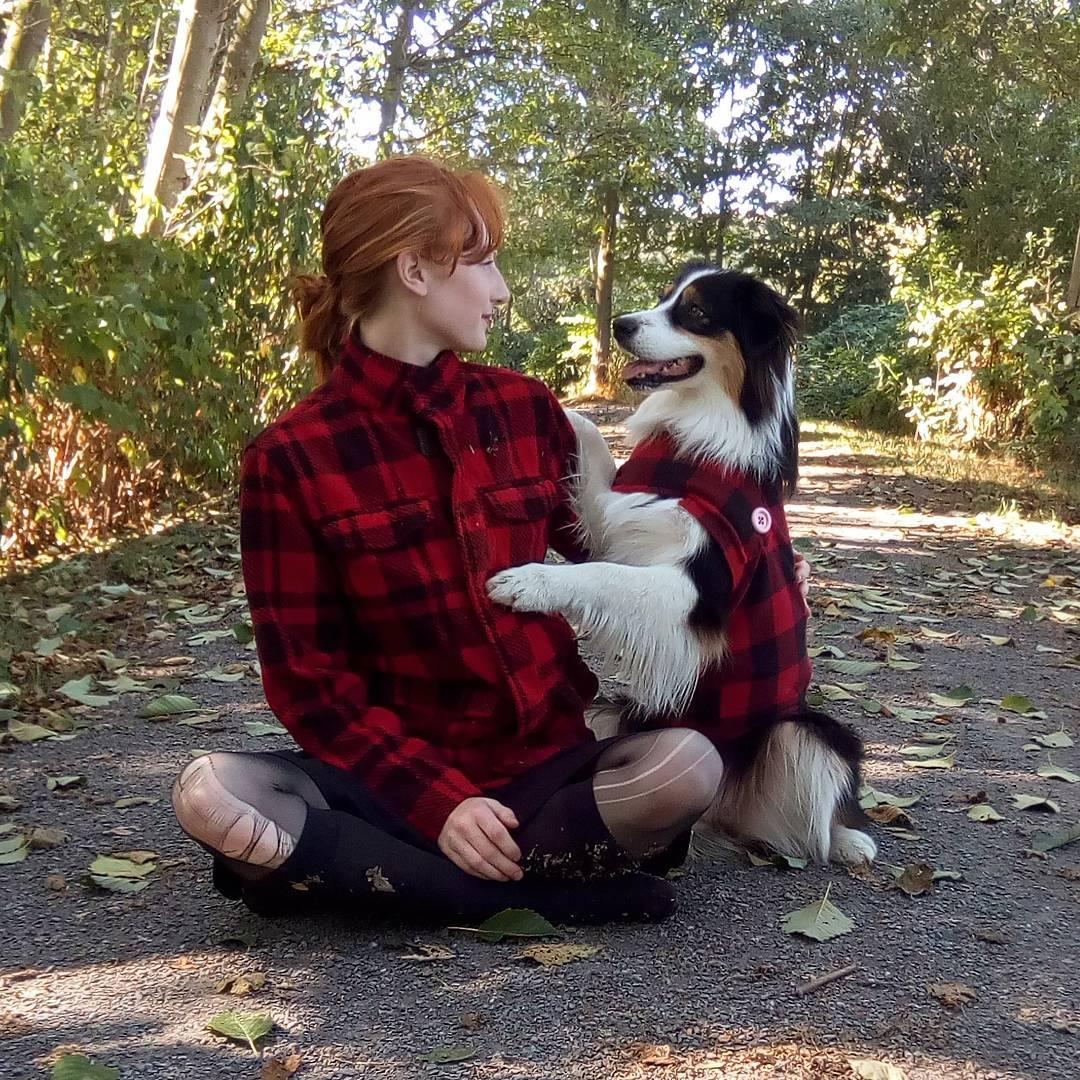 Знакомьтесь, этого замечательного пса зовут Секрет. Овчарка которая умеет всё