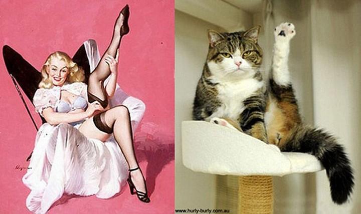 pinupcats07 Кошки и девушки в стиле пинап