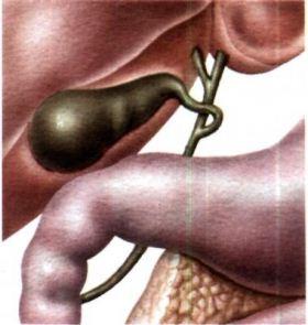 Фитотерапия. Лечение холецистита лекарственными травами