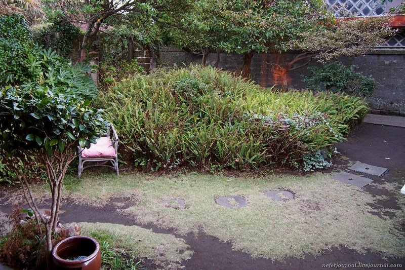 Как устроен традиционный японский дом путешествия, факты, фото