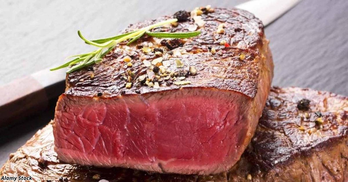 Ученые: «От вегетарианства никакой пользы! И вот почему…»