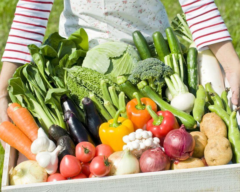 Проверенные полезные советы для хорошего урожая овощей