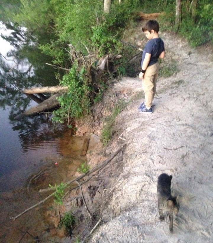 Отец с сыном пошли в поход с рыбалкой, а вернулись с кошкой и тремя котятами