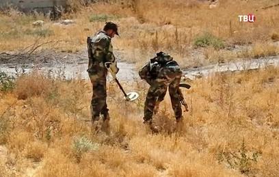 Российские и сирийские саперы нашли около тысячи мин в одном из сел