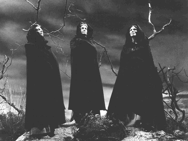 Маниакальная охота на ведьм, распространившаяся по северной Европе в 16-м и 17-м веках