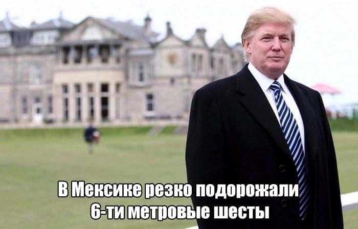 Дональд Трамп. Все приколы интернета