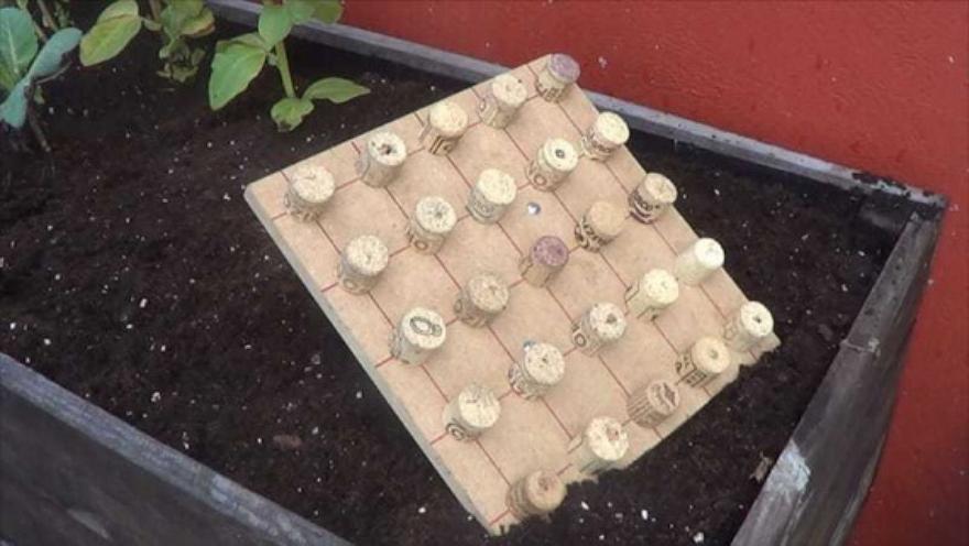 Маркер для семян