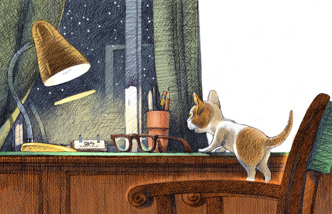 Удивительная история о коте …