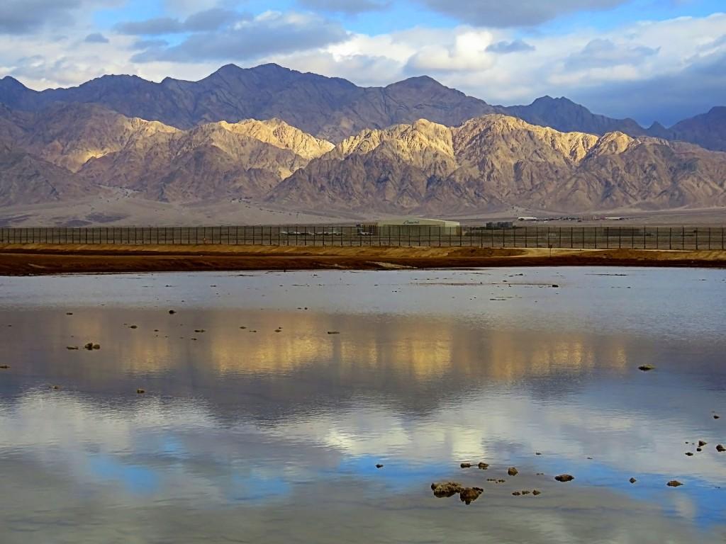 Пейзаж озера фламинго