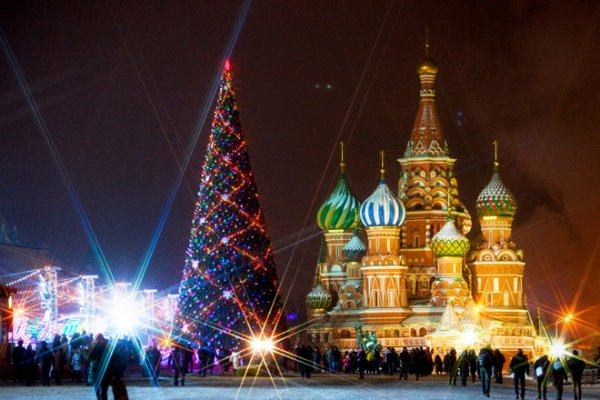 Главная ель России отправилась в Кремль