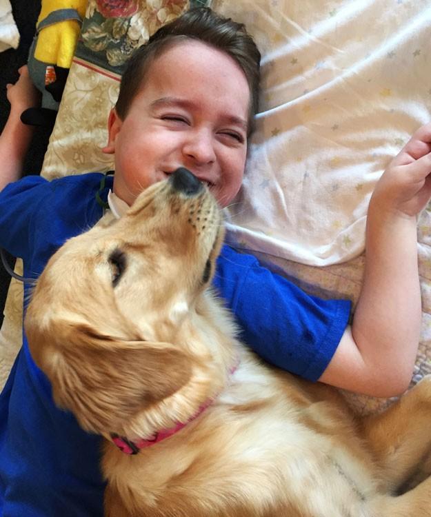 Мальчик, который не может ходить, впервые улыбается благодаря собаке